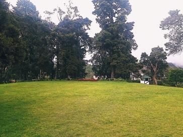 Garden overlooking Piduruthalagala Mountain / Picture by Razeen Ozzen